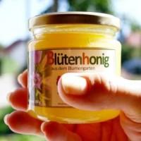 Honig - genießbare Vitaminbombe